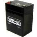Аккумуляторная батарея FG 20271 (12В 2.7Ач)