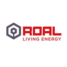 Источники питания и преобразователи напряжения ROAL LIVING ENERGY